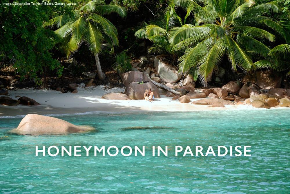 Seychelles Online Magazine Article