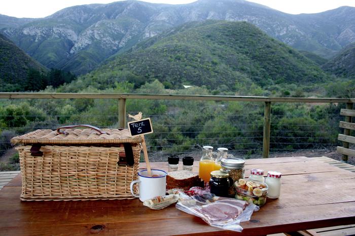 breakfast-pat-busch-robertson