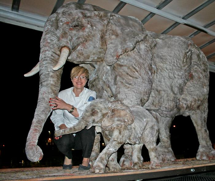 elephant-cake-cticc