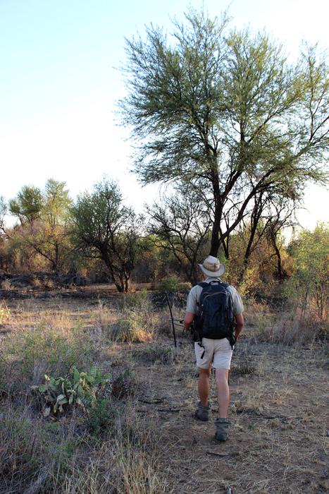walking-safari-okonjima