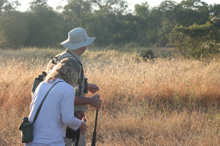 walking-safari-timbavati