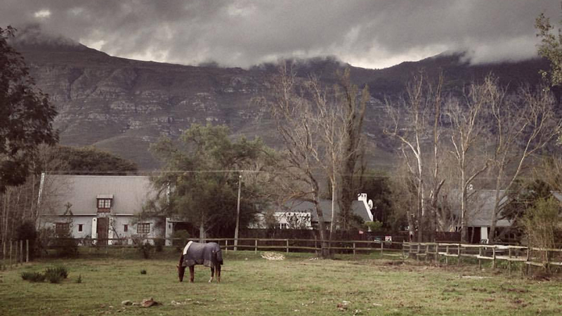 greyton-travel-5-star-stories